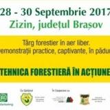 ForestRomaniaZizinProgemaForest .